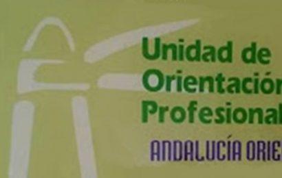 3 plazas de Técnicos de Orientación y 1 plaza de Administrativo (Mancomunidad de Municipios de la Comarca de Écija)