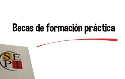 Becas de formación práctica (SEPI-Consorcio de compensación de Seguros)