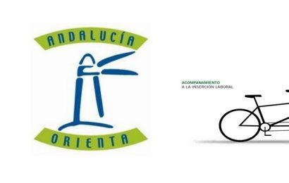 Convocadas 4 plazas de Técnicos de Orientación y 1 plaza de Administrativo (Ayto. de Úbeda – Jaén)
