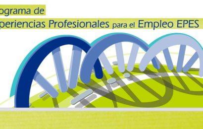7.500 prácticas profesionales remuneradas (Programa EPES – Andalucía)