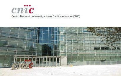 Becas para cursar un Máster y posibilidad de contrato posterior (CNIC)